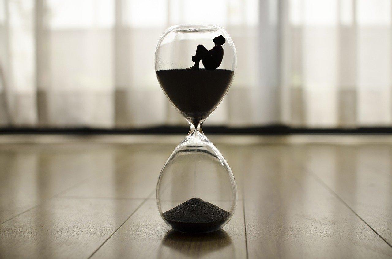 L'instinct du temps